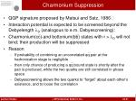 charmonium suppression