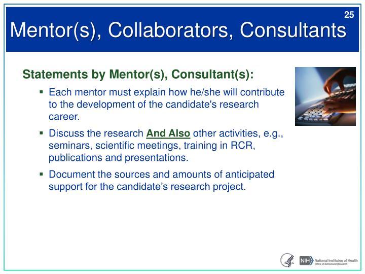 Mentor(s), Collaborators, Consultants