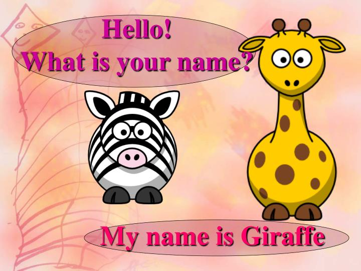 hello what is your name n.