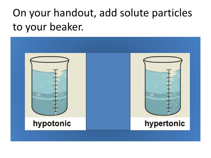 on your handout add solute particles to your beaker n.