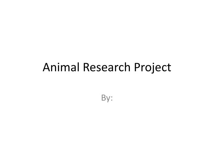 animal research project n.