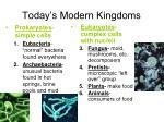today s modern kingdoms