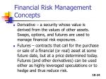 financial risk management concepts