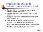 what can companies do to minimize or reduce risk exposure