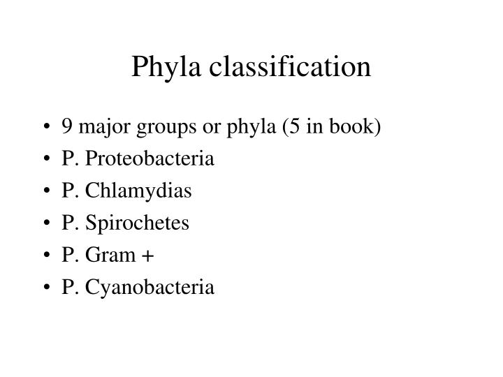 Phyla classification