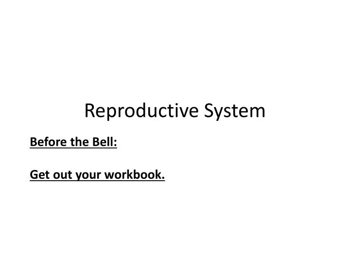 reproductive system n.