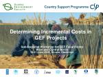 determining incremental costs in gef projects