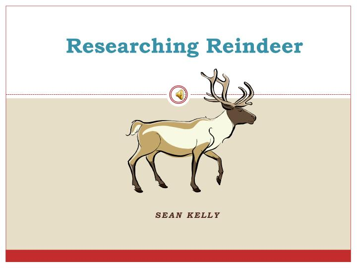 researching reindeer n.