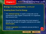 energy in living systems continued1