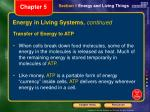 energy in living systems continued2