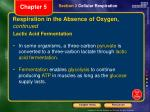 respiration in the absence of oxygen continued