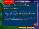 respiration in the absence of oxygen continued1