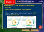 respiration in the absence of oxygen continued2