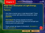 stage one absorption of light energy continued
