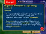 stage one absorption of light energy continued1