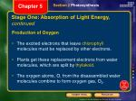 stage one absorption of light energy continued3