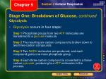stage one breakdown of glucose continued