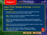stage three storage of energy continued