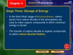 stage three storage of energy