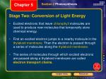 stage two conversion of light energy