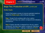 stage two production of atp continued