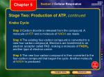 stage two production of atp continued1