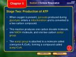 stage two production of atp