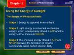 using the energy in sunlight