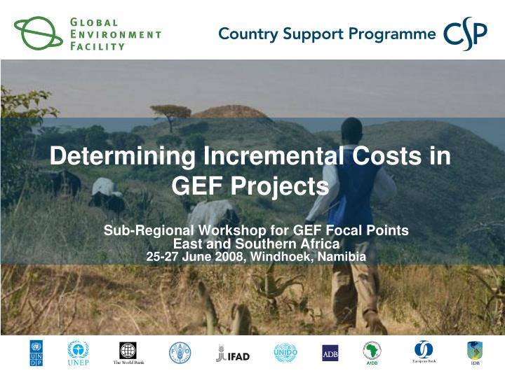 determining incremental costs in gef projects n.