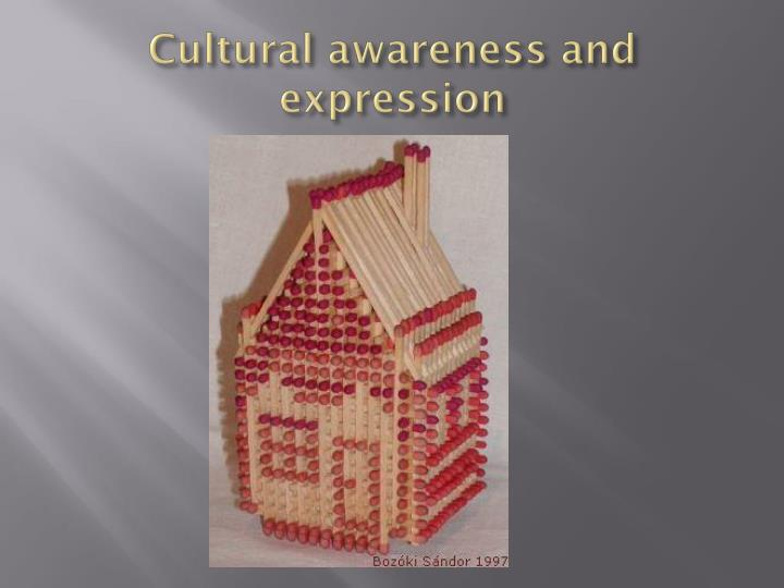 Cultural awareness and expression