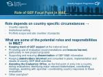 role of gef focal point in m e