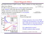 chiral magnetic effect1