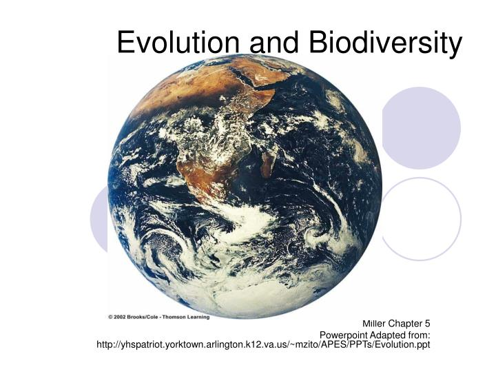 evolution and biodiversity n.
