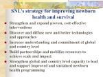 snl s strategy for improving newborn health and survival