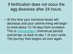 if fertilization does not occur the egg dissolves after 24 hours