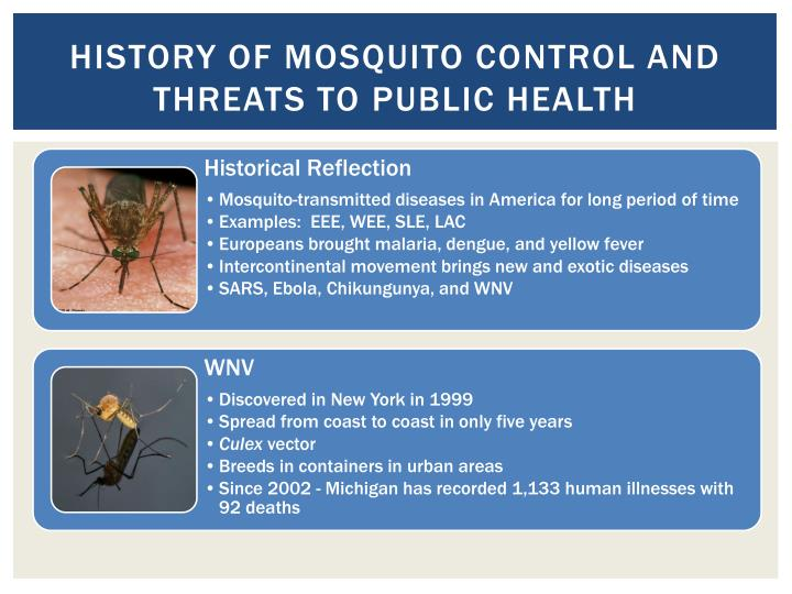 History of mosquito control and threats to public health