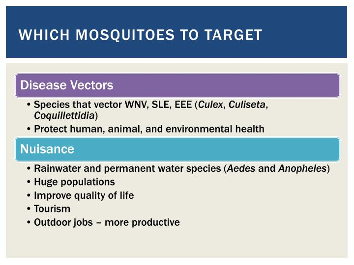 Which mosquitoes to target