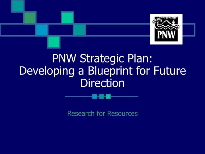 pnw strategic plan developing a blueprint for future direction n.