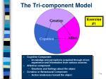 the tri component model