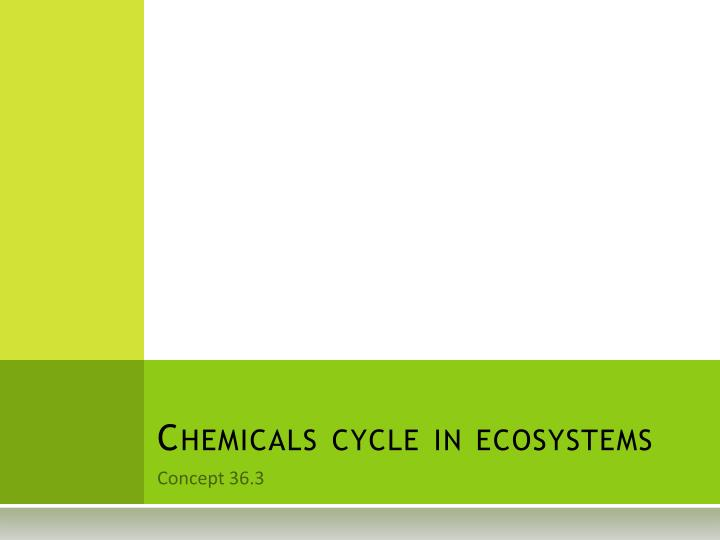 chemicals cycle in ecosystems n.