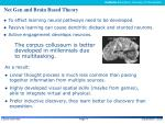 net gen and brain based theory