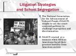 litigation strategies and school segregation