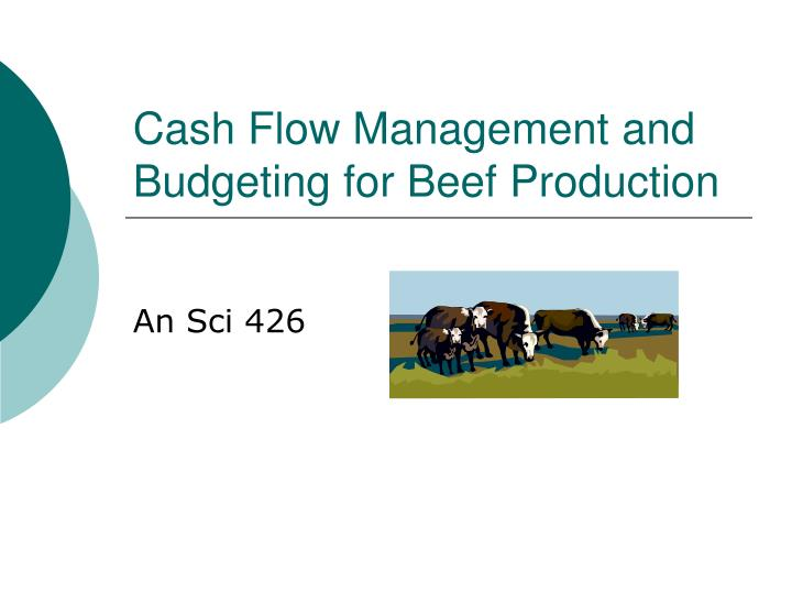 cash flow management and budgeting for beef production n.