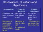 observations questions and hypotheses