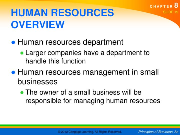 HUMAN RESOURCES OVERVIEW