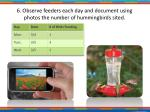 6 observe feeders each day and document using photos the number of hummingbirds sited