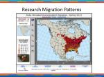research migration patterns