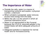 the importance of water1