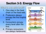 section 3 3 energy flow2