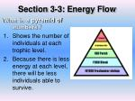 section 3 3 energy flow6
